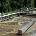 Millionen von Mitarbeitern bereiten das Wasser auf: Bakterien helfen bei der Arbeit.